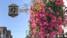 Colour with Guildford in Bloom