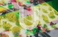 Audio: Ben Alessi - 'U'