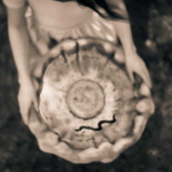 Water Snake © Tami Bone