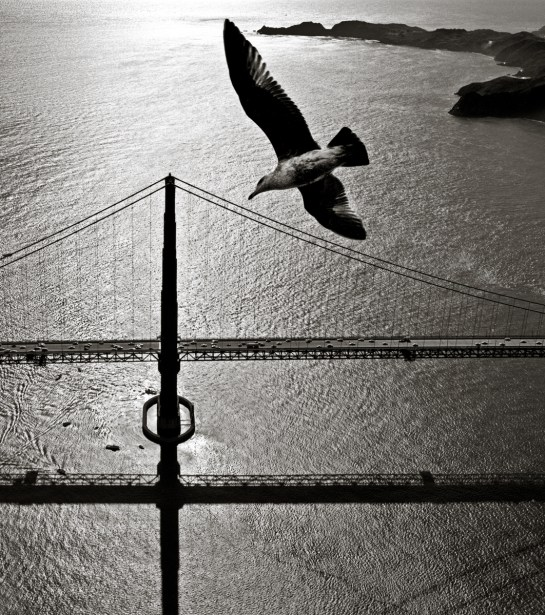 San Francisco Bay Bridge © Fred Lyon