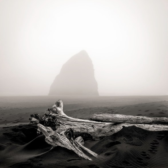 Driftwood and Stone, Oregon, 2013 © Matthew Vogt