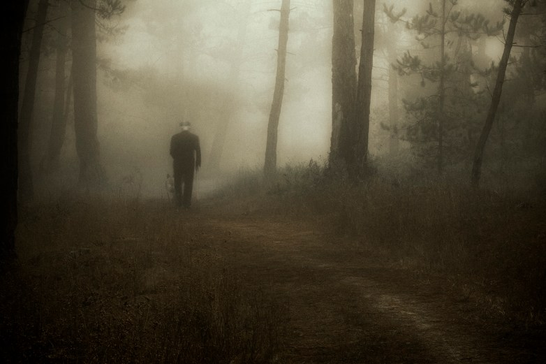 Into the Woods 6 © Eduardo Fujii
