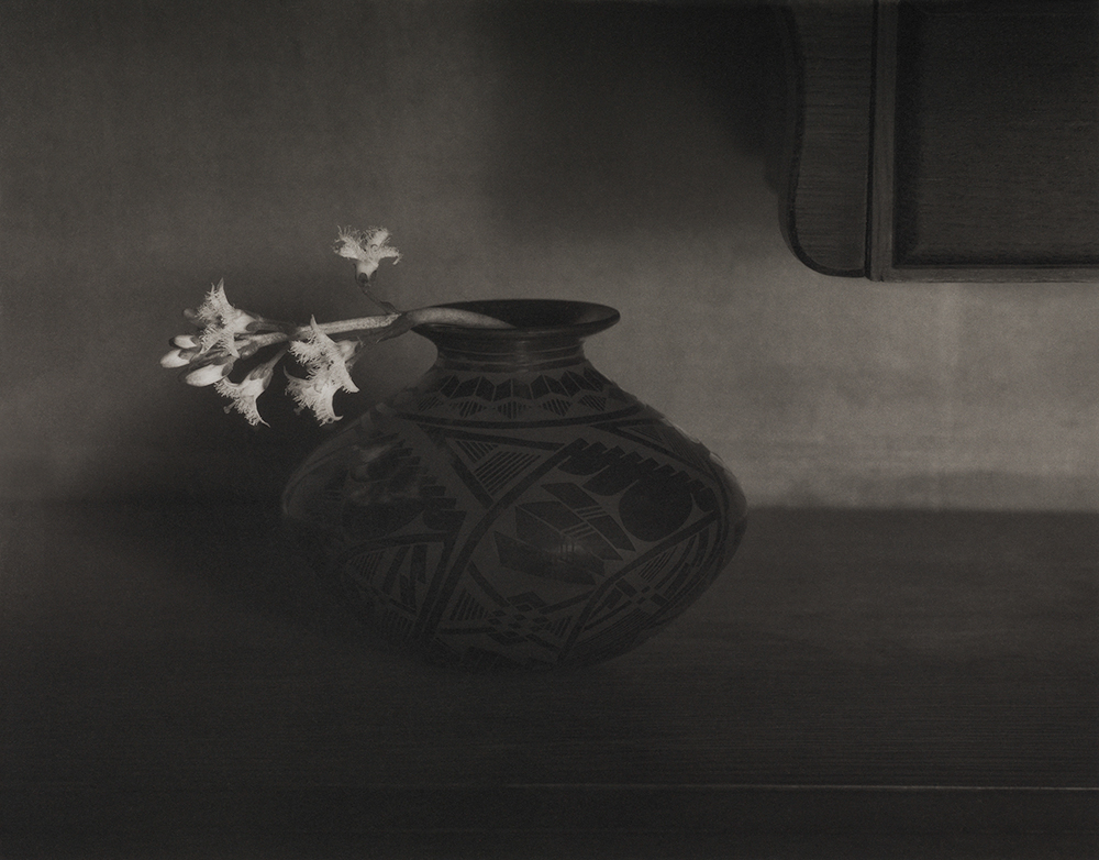 Bog Bean Flower ©Mark I.Nelson, Platinum/Palladium