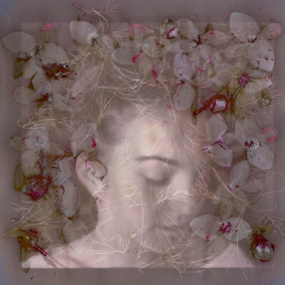 Blodewedd of the Nine Blossoms© Diane Fenster