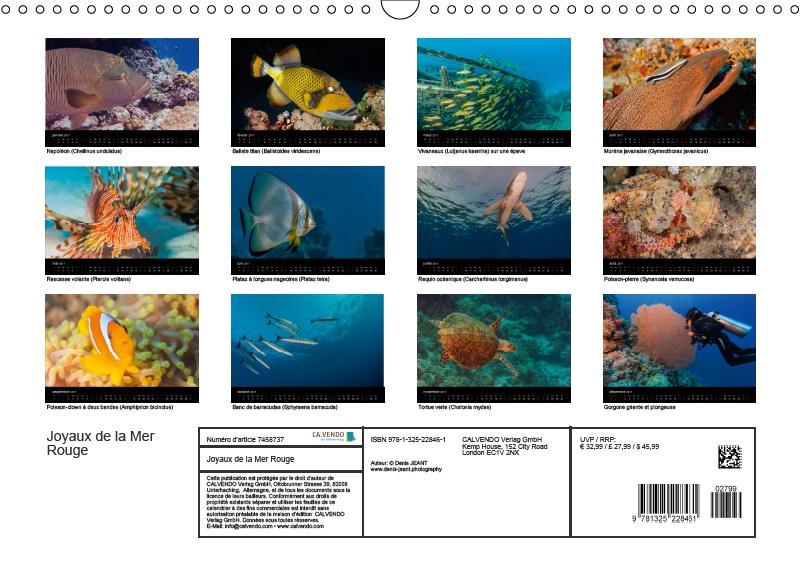 4 de couverture calendrier 2017 Joyaux de la mer rouge