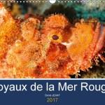 Première de couverture calendrier 2017 Joyaux de la mer rouge