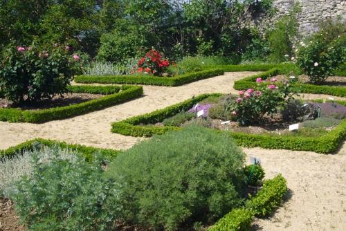 se promener au jardin botanique stage yoga