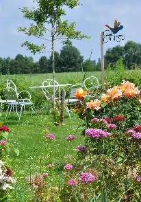 repas dans le jardin au milieu des fleurs