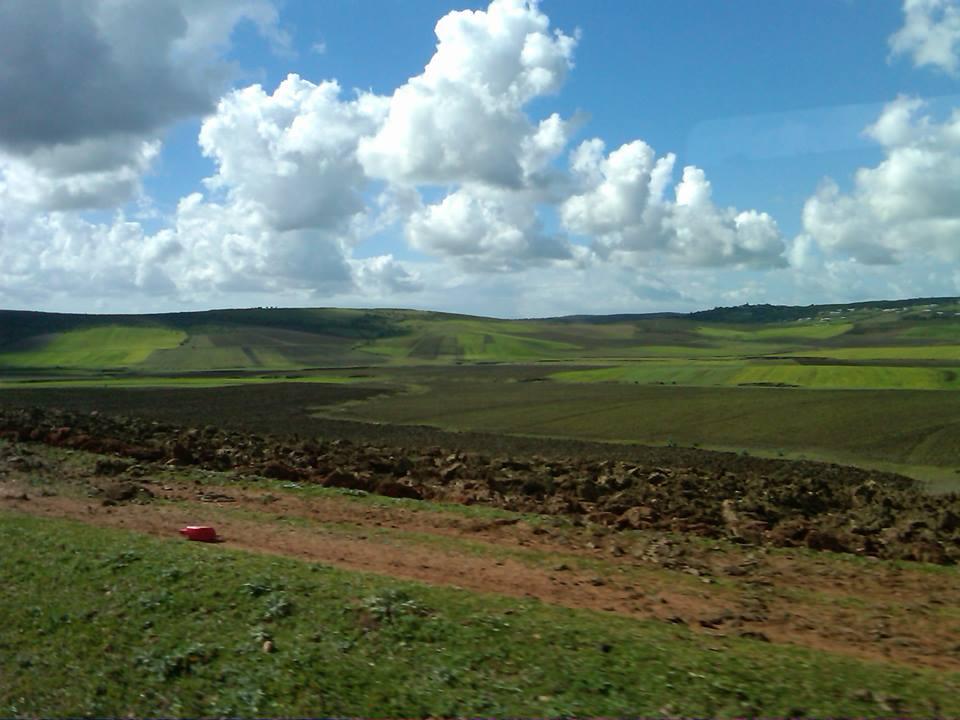 Farm land in Morocco