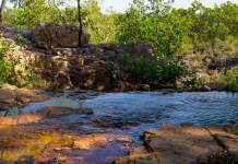 Litchfield National Park Day Trips from Darwin