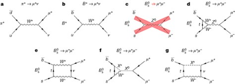 Seven Feynman diagrams related to the right arrow μ+μ−-decay.