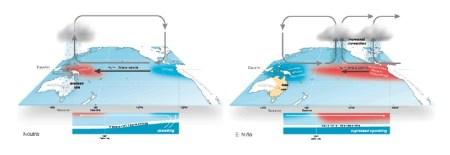 Two Walker diagrams illustrating the circulation pattern of the El Niño weather phenomenon.