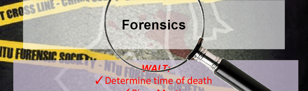 We Check the Time of Death with Post-Mortem Degradation of Skeletal Proteins – And Other Gruesome Forensic Facts of Life