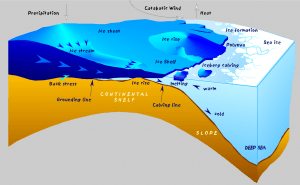 A geological cross-section diagram explaining the dynamic processes undergone by an ice shelf.