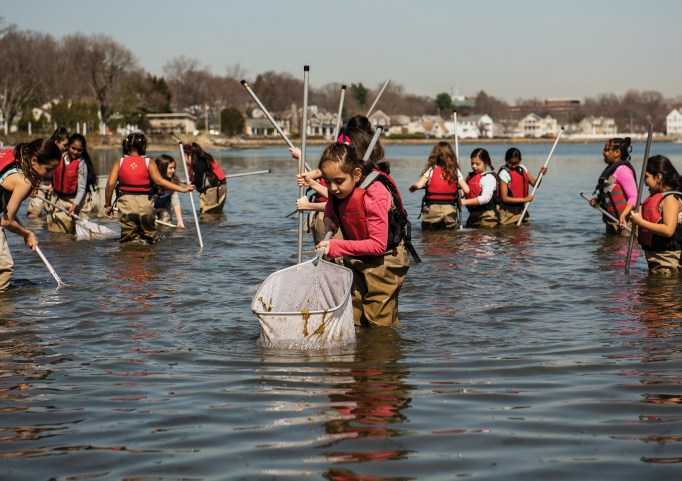 Girls in a SoundWaters program seine fishing for creatures in the Long Island Sound. Photo by Michael Bagley.