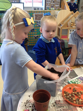 Nursery Science