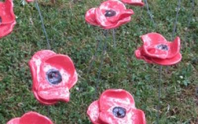 Memorial Poppies Y6
