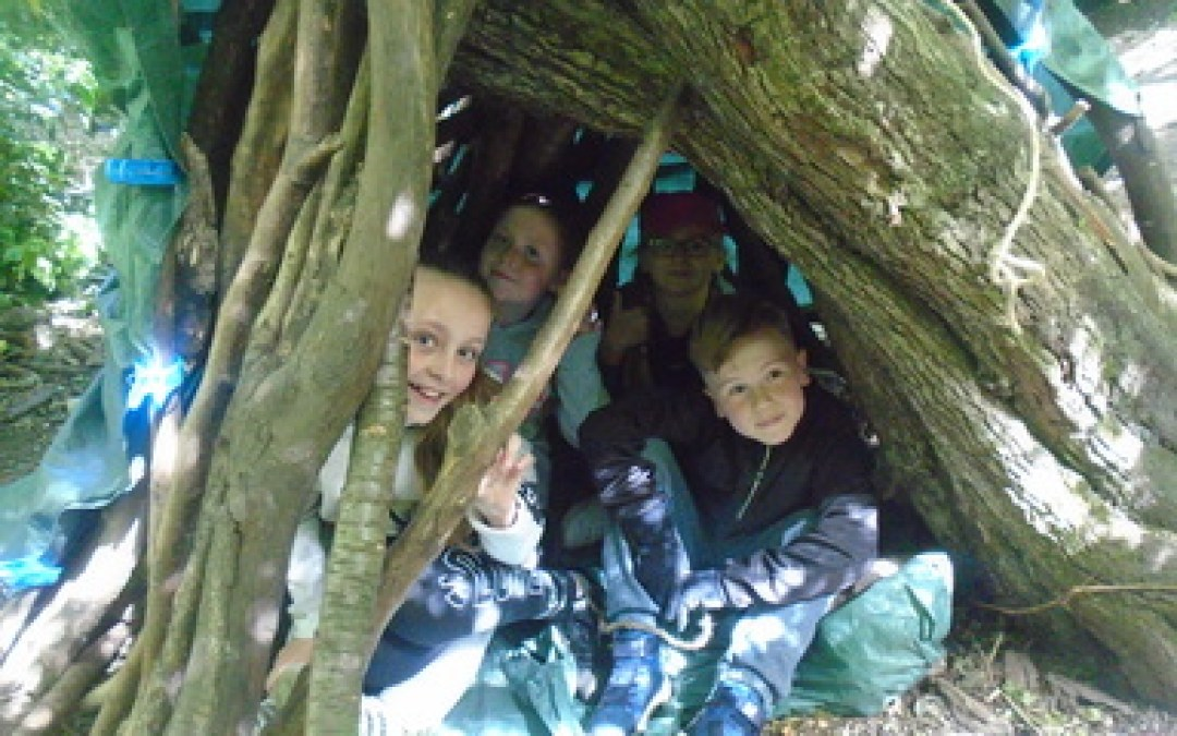 Den building at the Rising Sun country park
