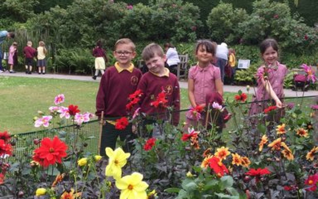 Year 1 Explore Durham Botanical Gardens