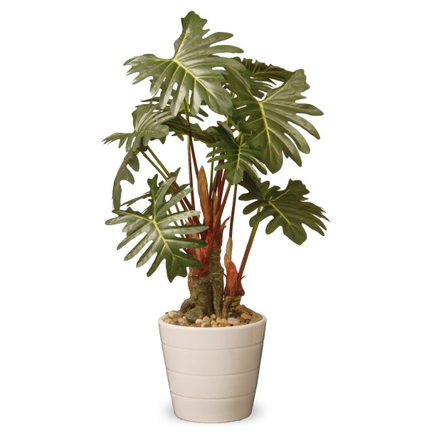 Artifical Philodendron | TARGET