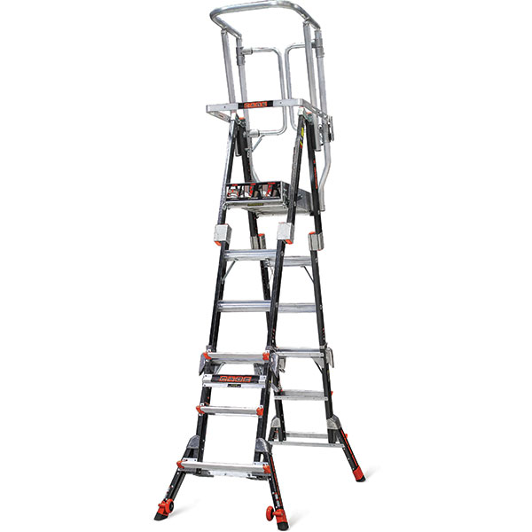 building ladder security cage