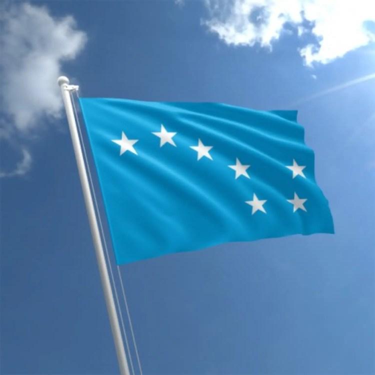starry-plough-flag-std