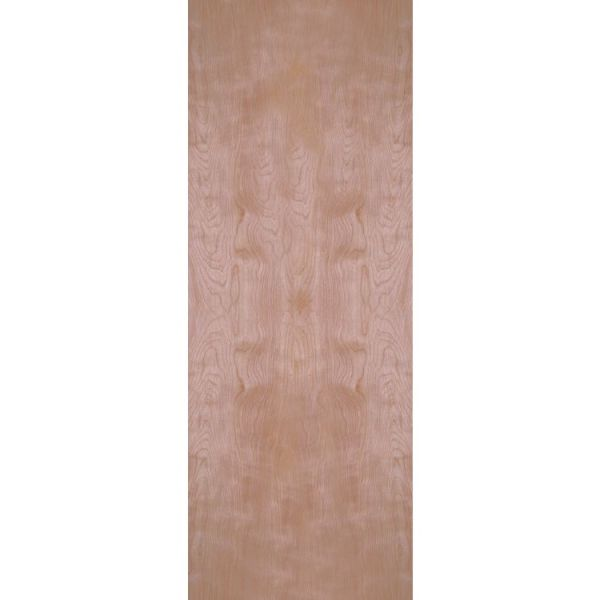 Birch Veneer flush interior door