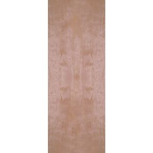 Birch Veneer flush interior door