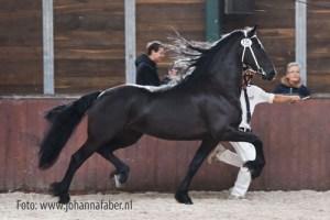 Veerle-van-Lapinenburg-Onne-x-Andries-8750