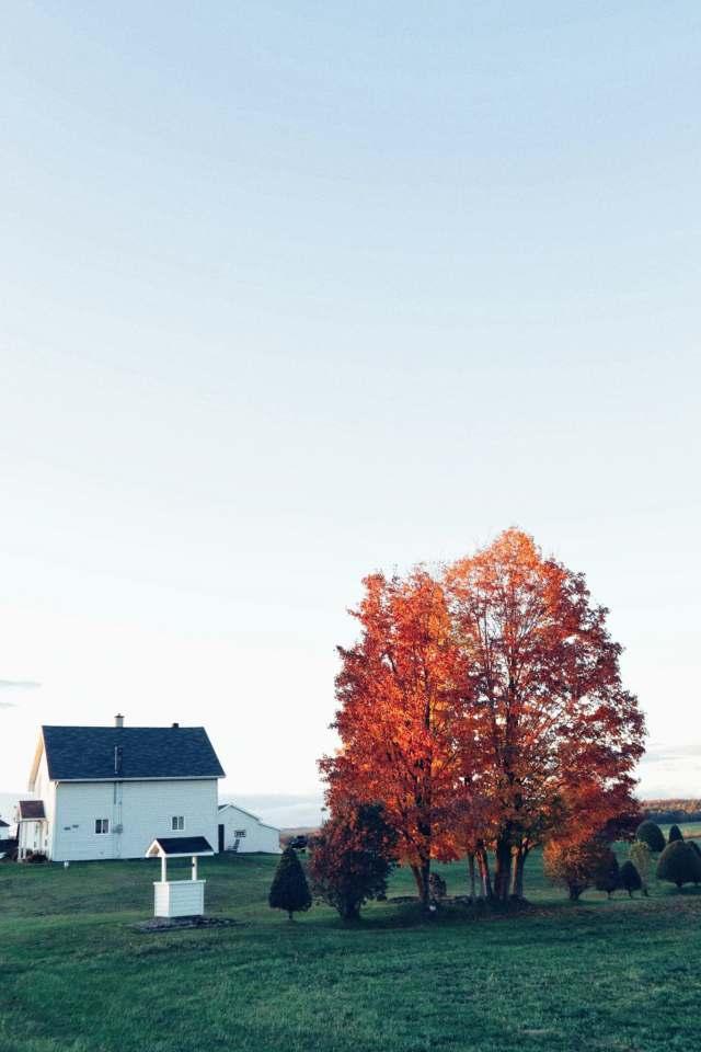 beauce-automne