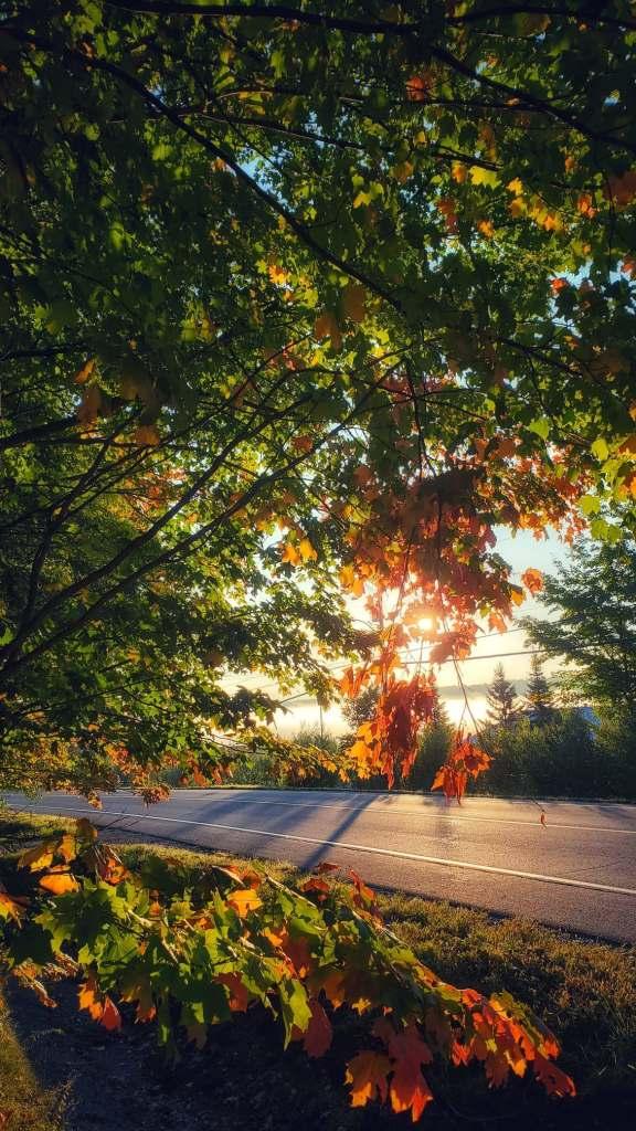 sunrise-quebec