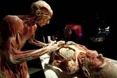 varie_anatomopatologo.jpg