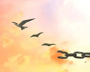 varie_libertà