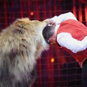 Donne che giocano con il leone (e perdono i figli)