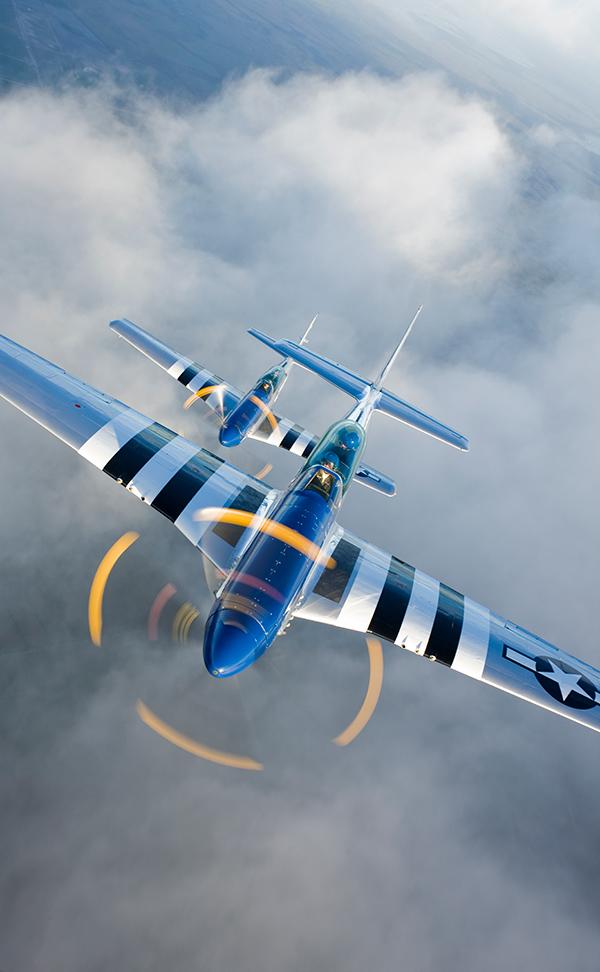 P-51 Mustang : mustang, Mustang, Facts, Stallion