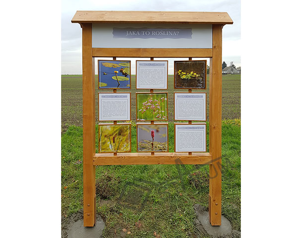 tablica-drewniana-edukacyjna3