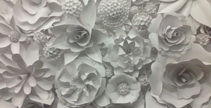 3d paper flower wonder