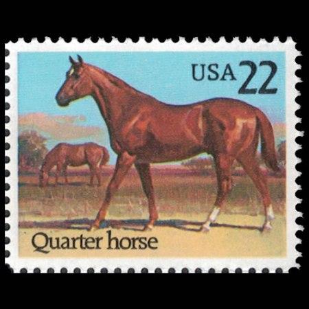 1985 U.S. #2155 - American Quarter Horse