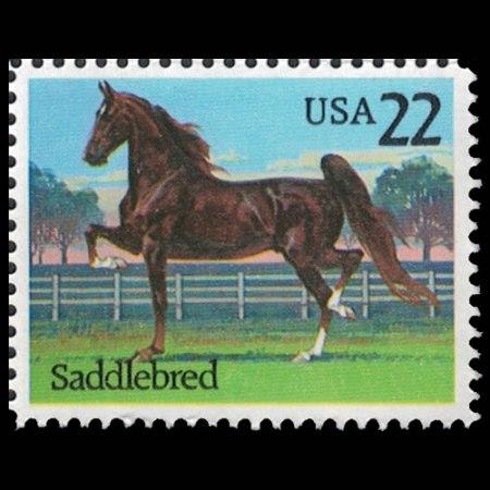 1985 U.S. #2157 - American Saddlebred Horse