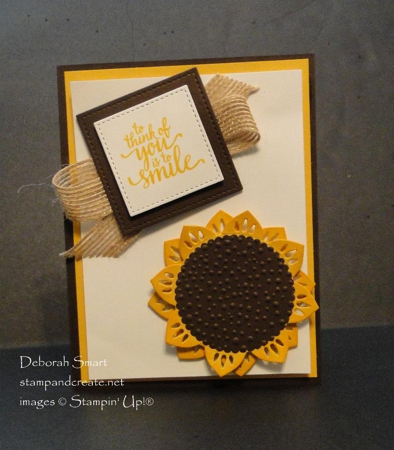 An Unusual Sunflower