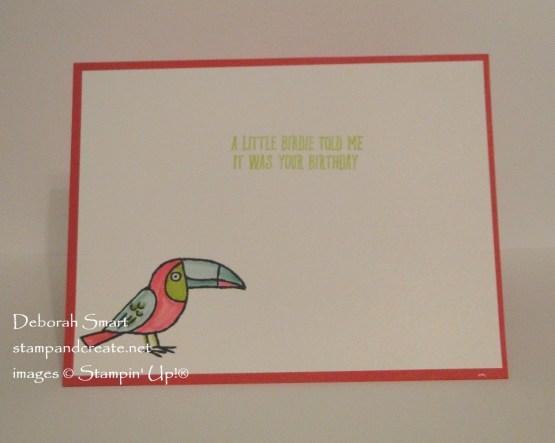 Happy Bird-Day!
