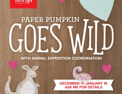 Paper Pumpkin Goes Wild!