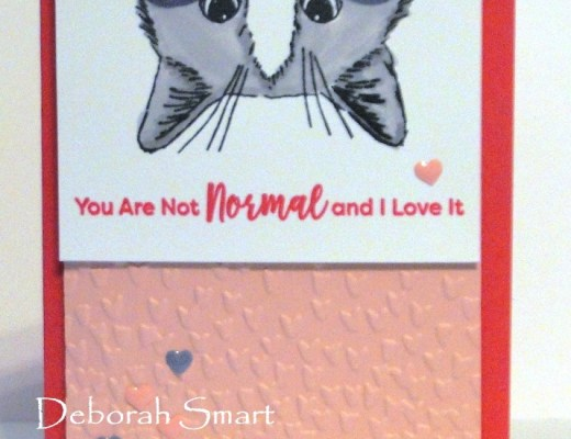 You're Not Normal