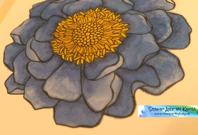 Blended Bloom - Heile mit Eile2