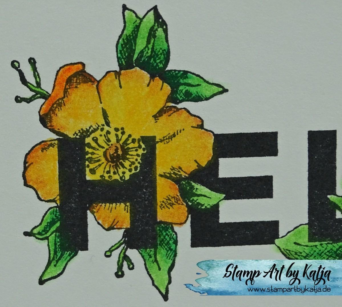 Eine Blume für dich :)