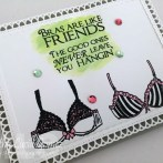 BRAS ARE LIKE FRIENDS