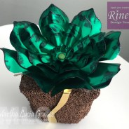 My succulents with Rinea Foil
