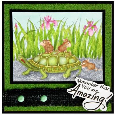 Turtle Ride by Jennie Lin Black