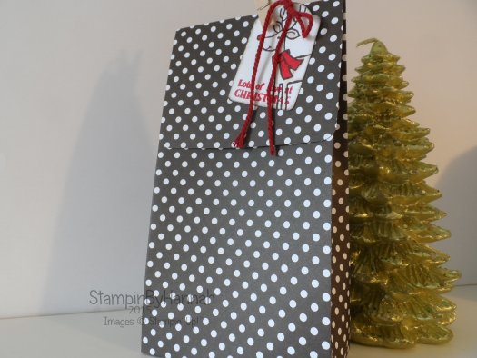 Stampin' Up! UK Christmas Gift Bag