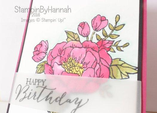 Stampin' Up! Uk Birthday Blooms Watercolour
